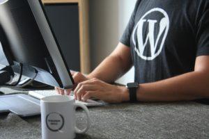 ブログ運営で伸びる人は有料テーマ利用者です